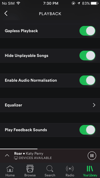 Equalizer settings of Spotify