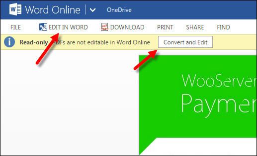 Convert and Edit in Word Online