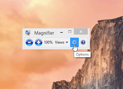 Magnifier settings