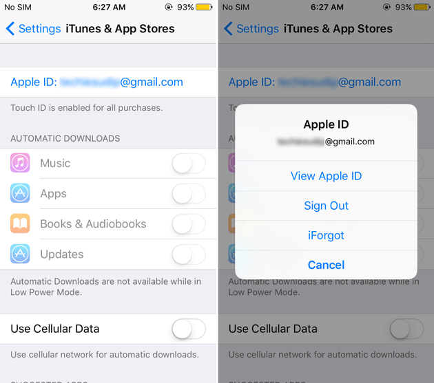 View Apple ID settings in iPhone