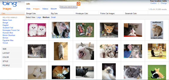 Improved Bing Image search