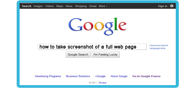 how to take a screenshot of a long web page