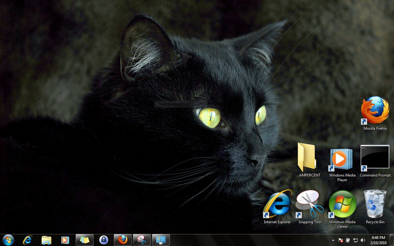 download windows 7 themes | cats everywhere theme
