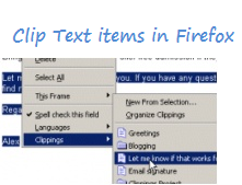 Save Text items in Firefox for frequent use