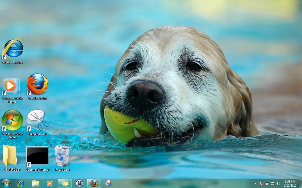 download windows 7 themes | dogs in summer theme