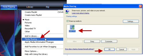 Windows Media Player LAN/WAN Sharing